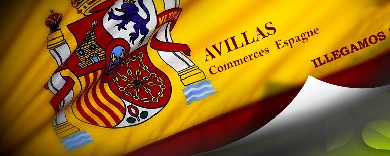 avillas-commerces-espagne.com