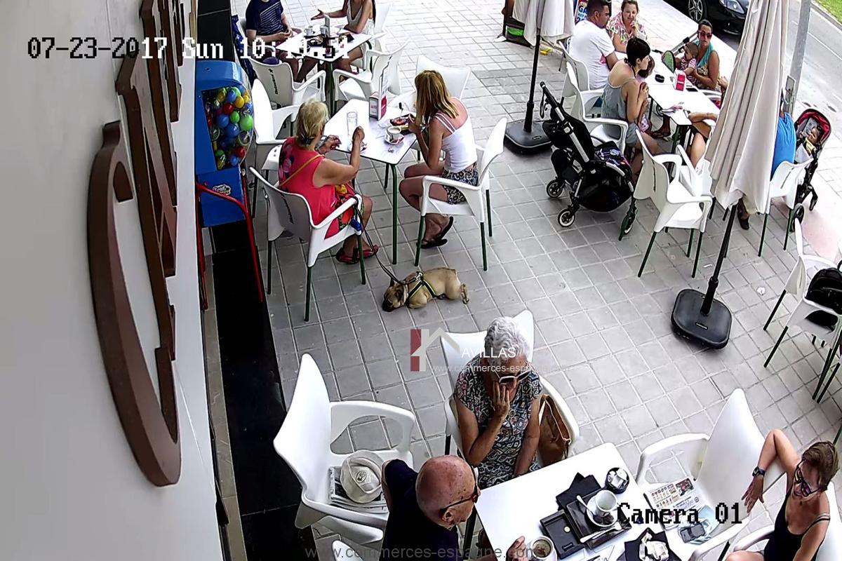 Alicante, Bar , Glacier, Snack avec terrasse