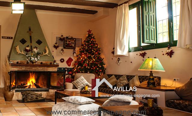 commerces-espagne-alicante-com35028-hotel-restaurant-salon-cheminée