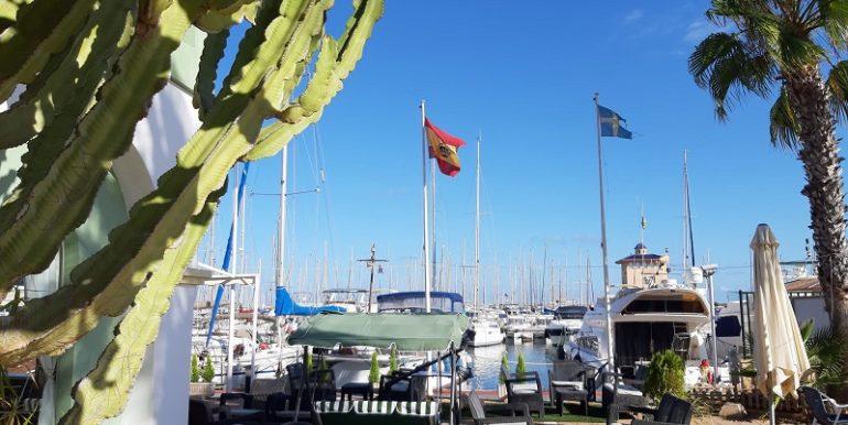 bar Marina club Torrevieja COM47124 (39)